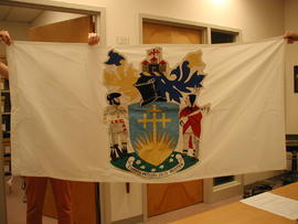 Flag with unofficial school crest