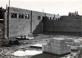 Construction of gymnasium